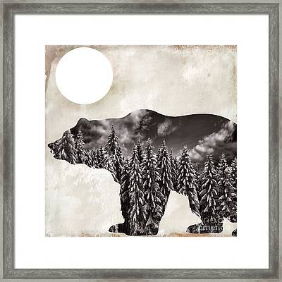 Something Wild Bear Framed Print by Mindy Sommers