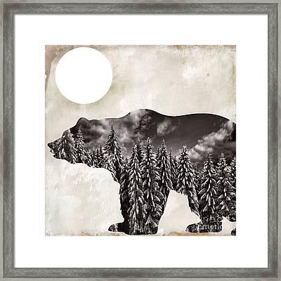 Something Wild Bear Framed Print