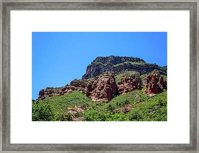 Something You Have To See Framed Print