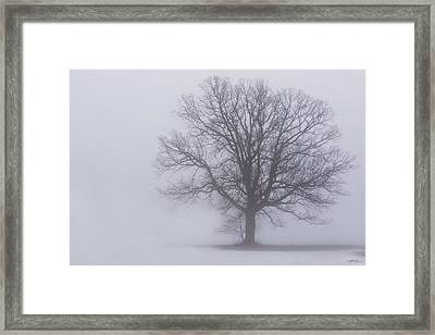 Sometime We Need The Fog Framed Print by Skip Tribby