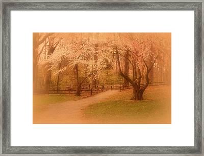 Sometimes - Holmdel Park Framed Print by Angie Tirado