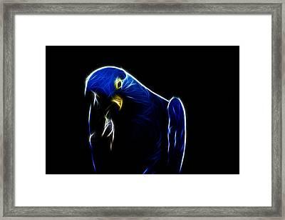 Somewhat Blue Framed Print by Douglas Barnard