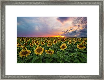 Somewhere Sunny  Framed Print by Aaron J Groen