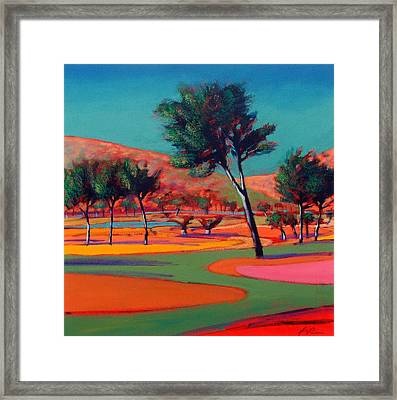 Son Vida Two Framed Print by Paul Powis