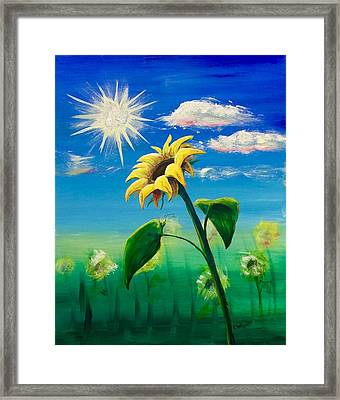 Sonflower Framed Print