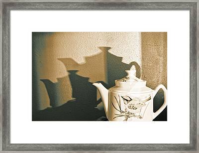 Song Bird Framed Print by Tom Druin