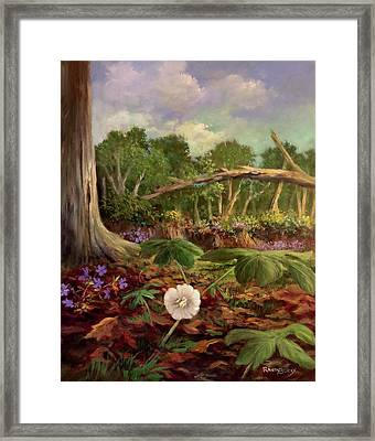 Song Of The Mayapple Framed Print by Randy Burns