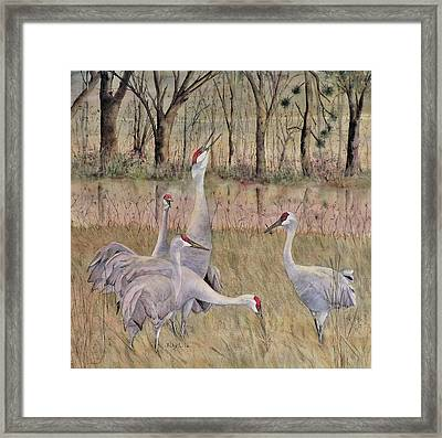 Song Of The Sandhill Framed Print by Vicky Lilla