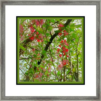 Songs Beneath The Flowering Branches Framed Print