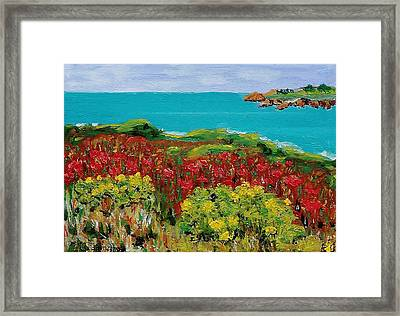 Sonoma Coast With Wildflowers Framed Print