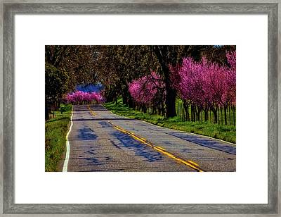 Sonoma Country Road Framed Print