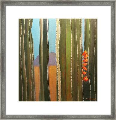 Sonoran Desert Cactus Reds Framed Print