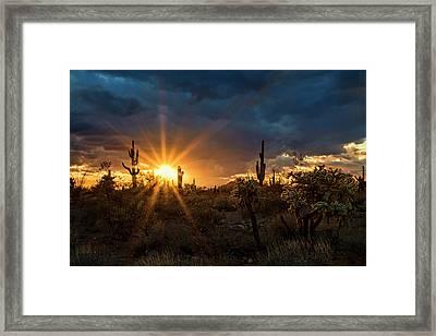 Framed Print featuring the photograph Sonoran Gold At Sunset  by Saija Lehtonen