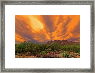 Framed Print featuring the photograph Sonoran Sonata H16 by Mark Myhaver