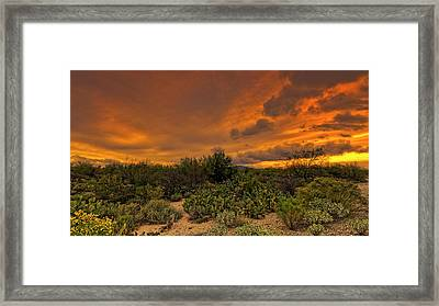 Framed Print featuring the photograph Sonoran Sunset H4 by Mark Myhaver