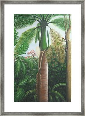 Sonrisa Framed Print by Toyo Perez