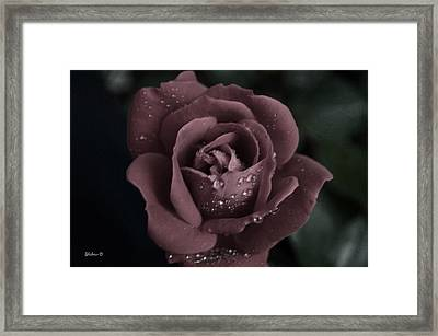 Soothing  Framed Print