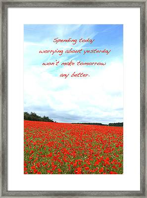 Soothing Poppies Framed Print by David Birchall