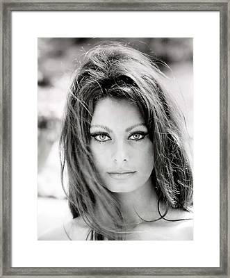 Sophia Loren Framed Print by Georgia Fowler