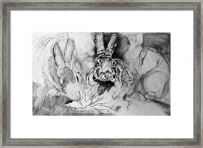 Soporific- Hungry Rabbits Framed Print by Susie Gordon