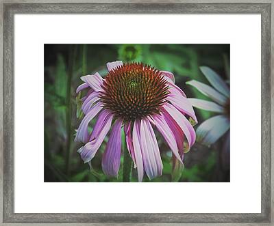 Framed Print featuring the photograph Sorrow by Karen Stahlros