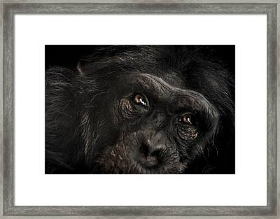 Sorrow Framed Print by Paul Neville