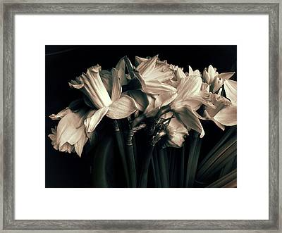 Sorrowful Framed Print by Jessica Jenney