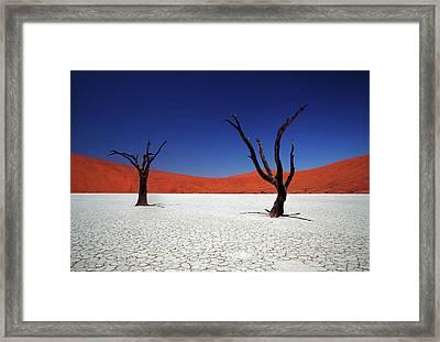 Sossusvlei In Namib Desert, Namibia Framed Print by Igor Bilic Photography