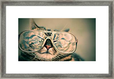 Sosy Cat With Glasses Framed Print