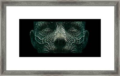 Soul Catcher Framed Print by Steve Barrett