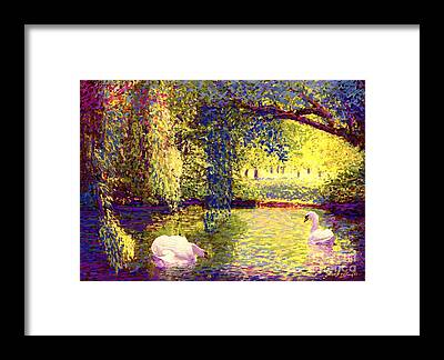 Willows Framed Prints
