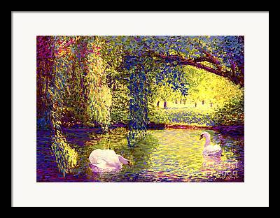 Swan Pair Paintings Framed Prints