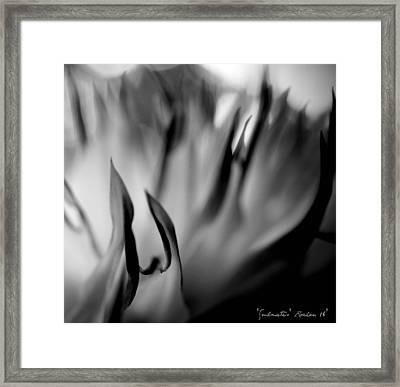 Soul Mates Framed Print