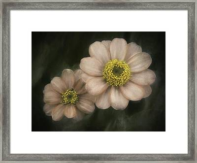 Soul Mates Framed Print by Scott Norris