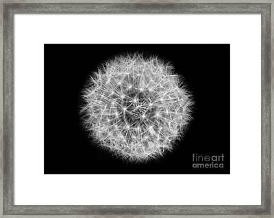 Soul Of A Dandelion Black And White Framed Print