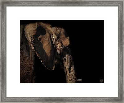 Soul Of The Planet Framed Print