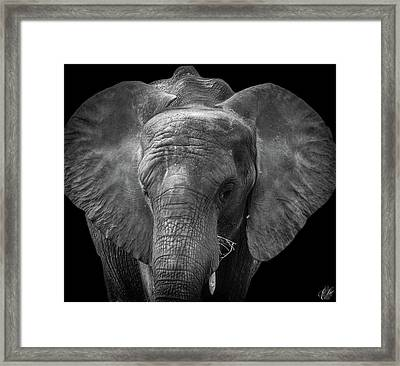 Soul Of The Planet, No. 11 Framed Print