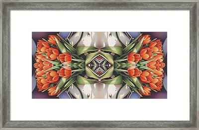 Soul Plexus - Tulips With Pearl Chakras Framed Print by Amy S Turner
