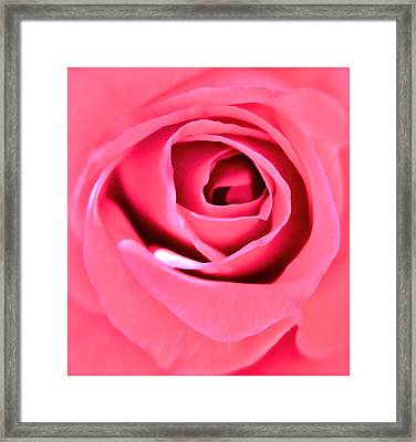 Soul Searching Framed Print by Gwyn Newcombe