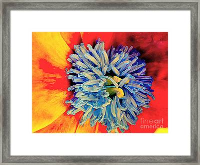 Soul Vibrations Framed Print