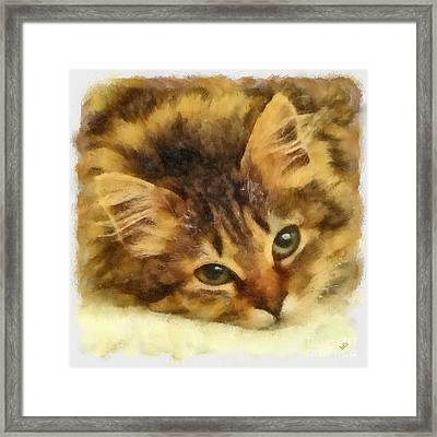 Soulful Eyes Framed Print