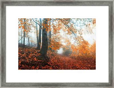 Sound Of Fall Framed Print by Janek Sedlar