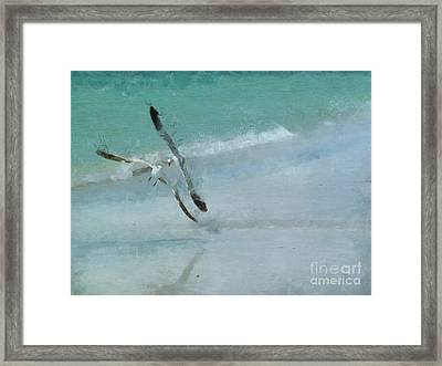 Sound Of Seagulls Framed Print by Claire Bull