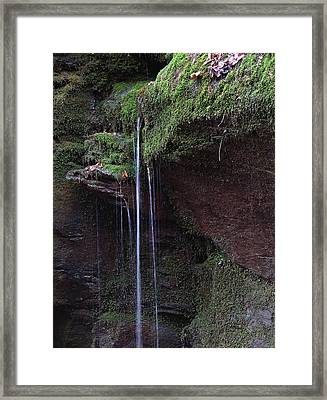 Sound That Brakes The Forest's Quiet Framed Print