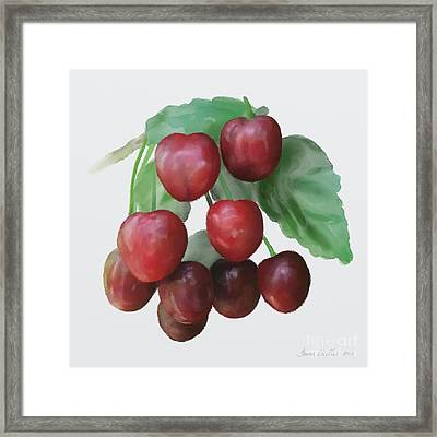 Sour Cherry Framed Print