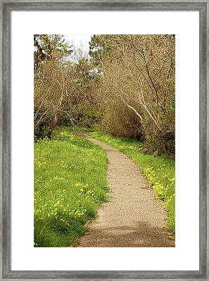 Framed Print featuring the photograph Sour Grass Trail by Art Block Collections
