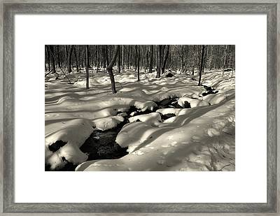 Framed Print featuring the photograph Sourland Mountains 4 by Steven Richman