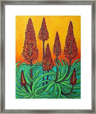 South African Fireball Framed Print by Lisa  Lorenz