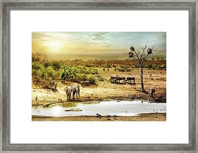 South African Safari Wildlife Fantasy Scene Framed Print by Susan Schmitz