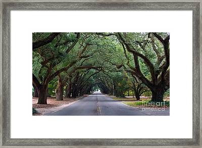 South Boundry Framed Print